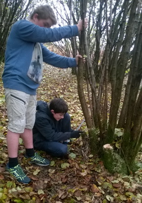 Recruiting: Young Rangers Project Officer