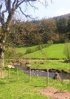 Catchment work continues in the Clun