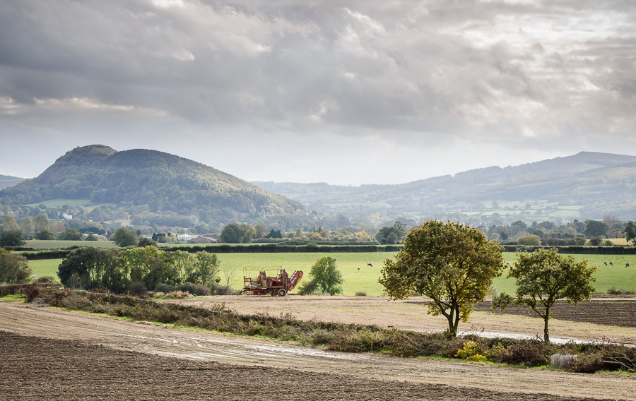 Pontesbury Hill by Phil King